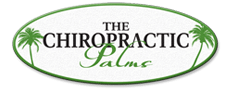 Chiropractic Saint Simons Island GA The Chiropractic Palms PC