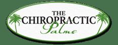 Chiropractic Saint Simons Island GA The Chiropractic Palms PC